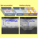 DISENTANGLING THE ORIGIN OF MAGNETIC PROXIMITY EFFECTS IN Pt/CoFe2O4